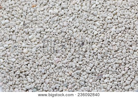 Cat Toiled Sand, Bentonite Sand In Close Up Macro View