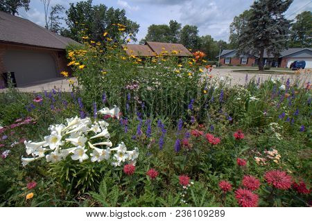 Garden Filled With Multiple Numerous Flowers In Full Bloom In Summer