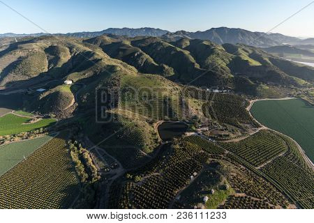 Aerial view of farm fields and hillside groves near Camarillo in Ventura County, California.