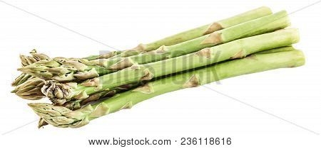 Isolated Vegetables. Brunch Of Fresh Green Asparagus Isolated On White Background With Clipping Path