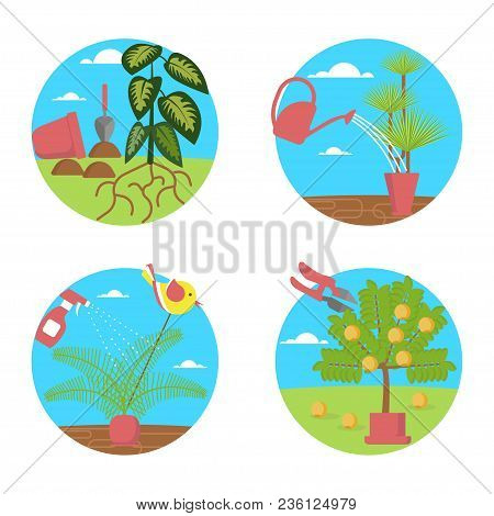 Window Gardening Infographic Elements. Vector Set Of Flat Illustration Of Horticultural Sundry, Hous