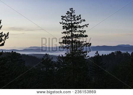 Morning Mountain View Through Forest. Mountain Layers And Fog. Early Morning In The Mountain Forest.