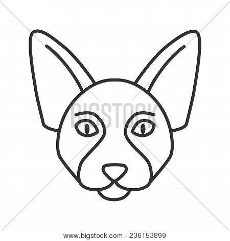 Canadian Sphynx Linear Icon. Thin Line Illustration. Hairless Cat Breed. Contour Symbol. Vector Isol