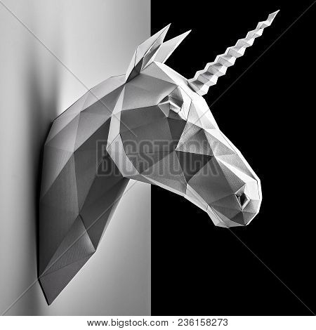 Graphitic Grey Unicorn's Head Hanging On The Contrast White And Black Wall.
