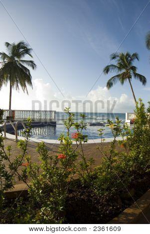 Infinity Swimming Pool Nicaragua