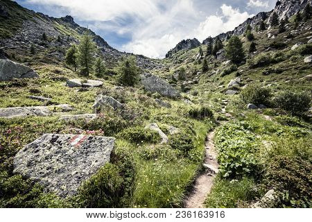 Trail In Mountains Of Italy, Way In Mountainsin Europe, Summer Untouched Nature In Alps, Hiking Trai