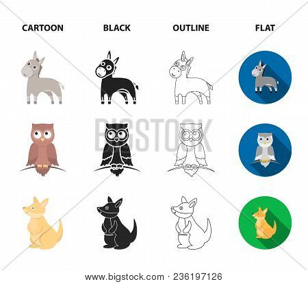 Donkey, Owl, Kangaroo, Shark.animal Set Collection Icons In Cartoon, Black, Outline, Flat Style Vect