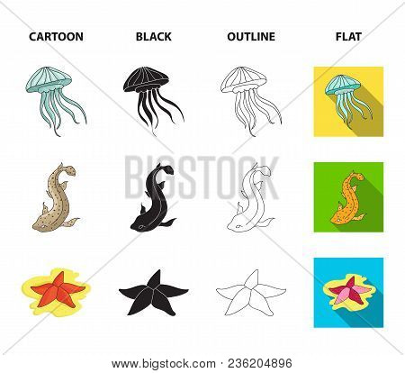 Jellyfish, Squid And Other Species.sea Animals Set Collection Icons In Cartoon, Black, Outline, Flat
