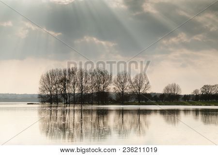An Image Of A Line Of Trees Backlit By Rays Of Sunshine Shot At Rutland Water, Rutland, England, Uk