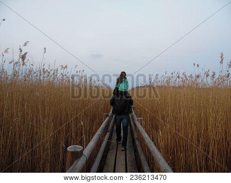 Wooden Footbridge In The Lake Kanieris In Latvia, Nice Walk