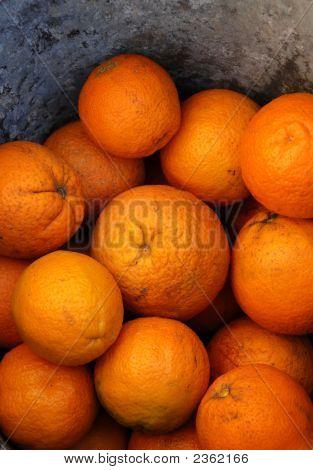 Oranges 201