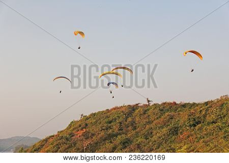 Paragliders Against The Blue Sky. Bright Paragliders Fly In The Sky. Extreme Sport. Extreme. India,