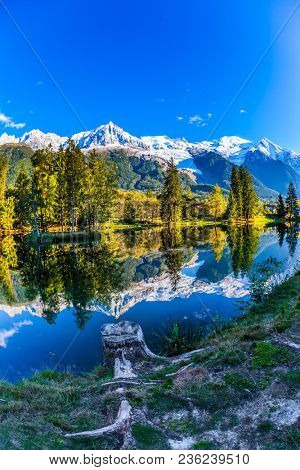Magically beautiful park in the mountain resort of Chamonix. Large stump on the shore of the lake. Snowy peaks of the Alps are beautifully reflected in the lake. Concept of active and ecotourism