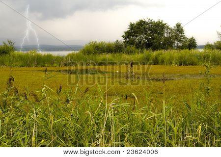 Autumn marsh thunder-storm