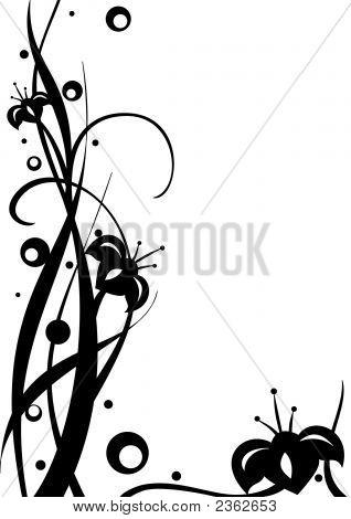 White-Black Illustration