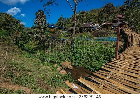 Wooden Bridge Above The Field Of Agriculture Of Farmer For Walk Across, Thailand Landmark In North