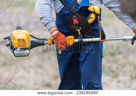 Gardener Cutting Tree Branch With Pole Saw