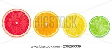 Isolated Citrus. Fresh Fruits Sliced In A Row On A White Background.