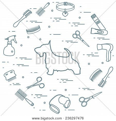 Scotch Terrier Silhouette, Combs, Collar, Leash, Razor, Hair Dryer, Scissors, Sprayer Arranged In A