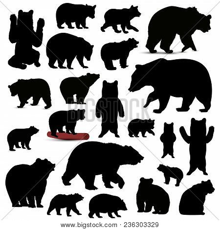 Silhouettes Of Bears In Black Tones. Icon