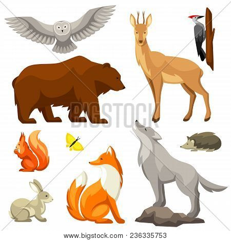 Set Of Woodland Forest Animals And Birds. Stylized Illustration.