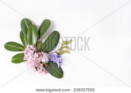 Spring Botanical Floral Composition. Dcorative Corner. Pink Japanese Cherry Blossoms, Blue Scilla Fl
