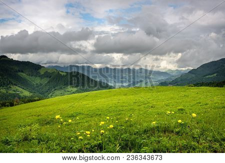 View At A Mountain Hill At Daytime. Mountain Landscape In Summer With Cumulus Clouds. Mountain Meado