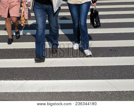 Male And Female Legs On The Pedestrian Zebra Lines. A Group Of People Crossing The Road. Pedestrian