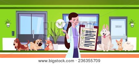 Female Veterinarian Over Dogs Sitting In Waiting Room In Vet Clinic Office Flat Vector Illustration