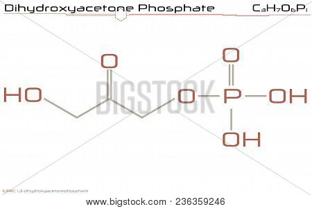 Large And Detailed Infographic Of The Molecule Of Dihydroxyacetone Phosphate.