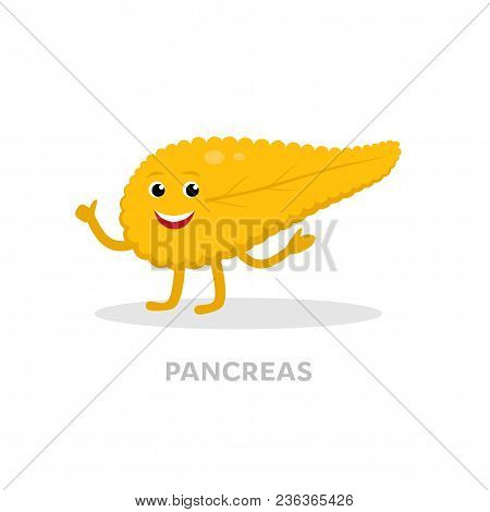 Strong Healthy Pancreas Cartoon Character Isolated On White Background. Happy Heart Icon Vector Flat