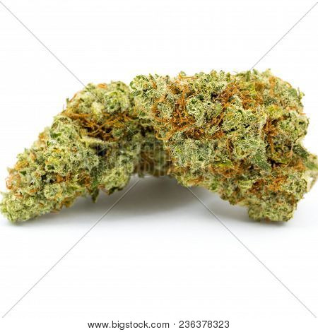 Marijuana Flower, Often Called Buds Or Cannbis, Against An Isolated White Background Shot In A Dispe