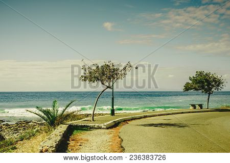 Sunny Promenade During Summertime Weather In Warm Climate Country. View At See And Tropical Trees.