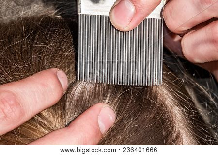 A Young School Girl Is Having Her Hair Checked For Head Lice Using A Special Comb.