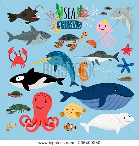 Sea Animals. Vector Underwater Animal Creatures And Fish In The Sea, Swordfish And Langoustine, Ocea