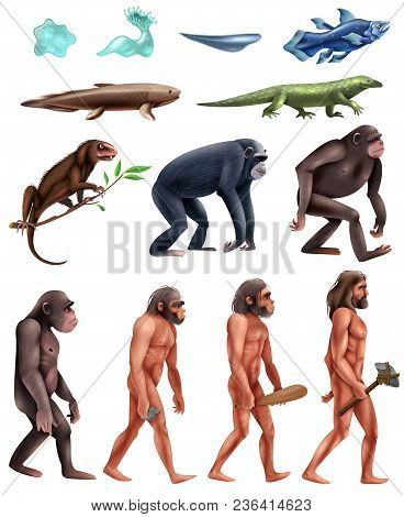 Colored And Isolated Darwin Evolution Icon Set With Transition From Era To Era Vector Illustration