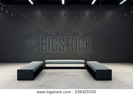 Contemporary Exhibition Hall With Copy Space On Wall And Bench. Gallery, Art, Exhibit And Museum Con