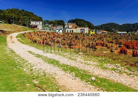 San Juan Chamula, Mexico - March 25, 2015:  Cemetery In San Juan Chamula, An Indigenous Town With Un