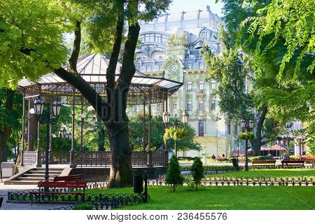 summer city park, bright sunlit, green trees and shadows