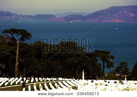 Rows Of Headstones At The Presidio National Cemetery With Views Of The San Francisco Bay Taken In Sa