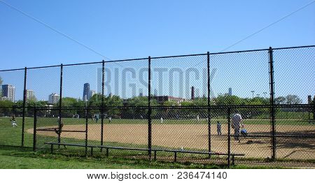 People Playing Baseball With Their Kids In Oz Park Under A Clear Blue Sky In Summer, Chicago, Il May