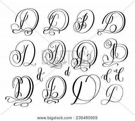 Calligraphy Lettering Script Font D Set, Hand Written Signature Letter Design, Vector Illustration