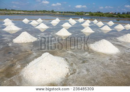 White Salt Field In Sunny Day. Royalty High Quality Free Stock Image Of White Salt Field In A Beach