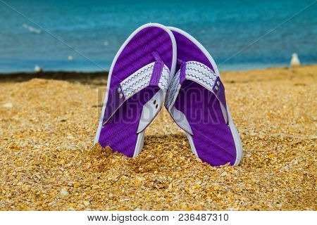 Pair Of Flip Flops Sticking Up On A Sandy Sea Beach. Summer Vacation Concept