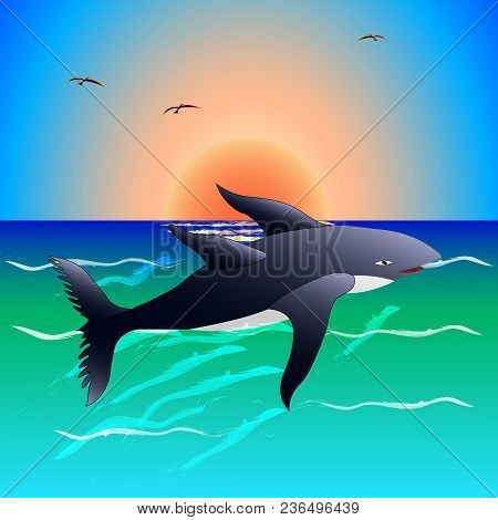 Unusual Animal, Rare, Sea Animal, Fish, Frolicking In The Water At Sunset. Vector Illustration