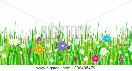 Spring Grass And Flowers Borders. Seamless Pattern Easter Decoration With Spring Grass And Meadow Fl