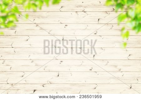 Spring Green Leaves Over Wood Fence Background