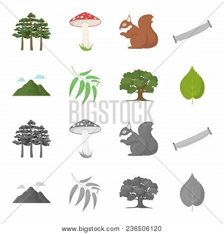 Mountain, Cloud, Tree, Branch, Leaf.forest Set Collection Icons In Cartoon, Monochrome Style Vector