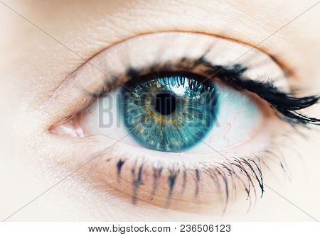 A Macro Capture On Womans Eyes And Makeup