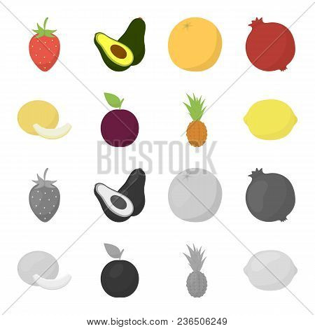 Melon, Plum, Pineapple, Lemon.fruits Set Collection Icons In Cartoon, Monochrome Style Vector Symbol